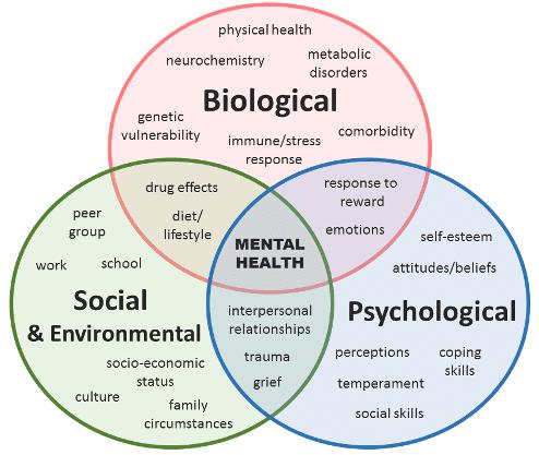 Biopsychosocial Assessment